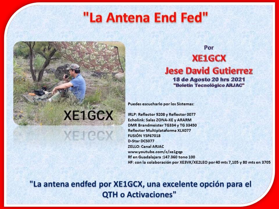 2021-08-19_la_antena_end_fed